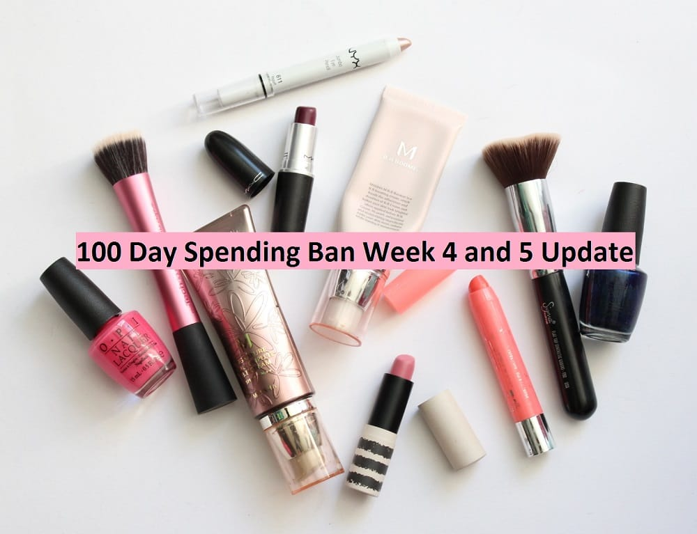 100 Day Spending Ban Week 4 and 5 Update 1