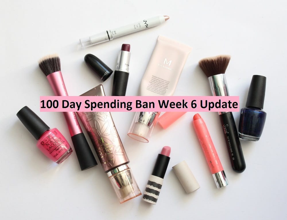 100 Day Spending Ban Week 6 Update