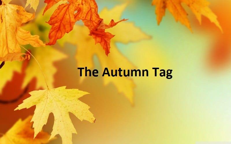 The Autumn Tag 2014