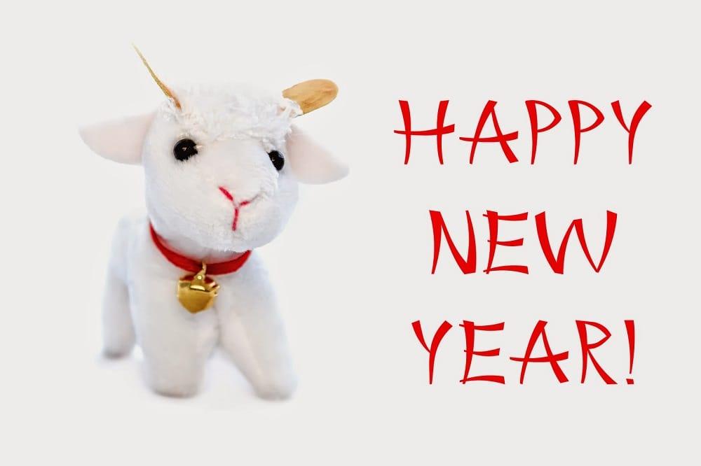 Chinese New Year 2015 1